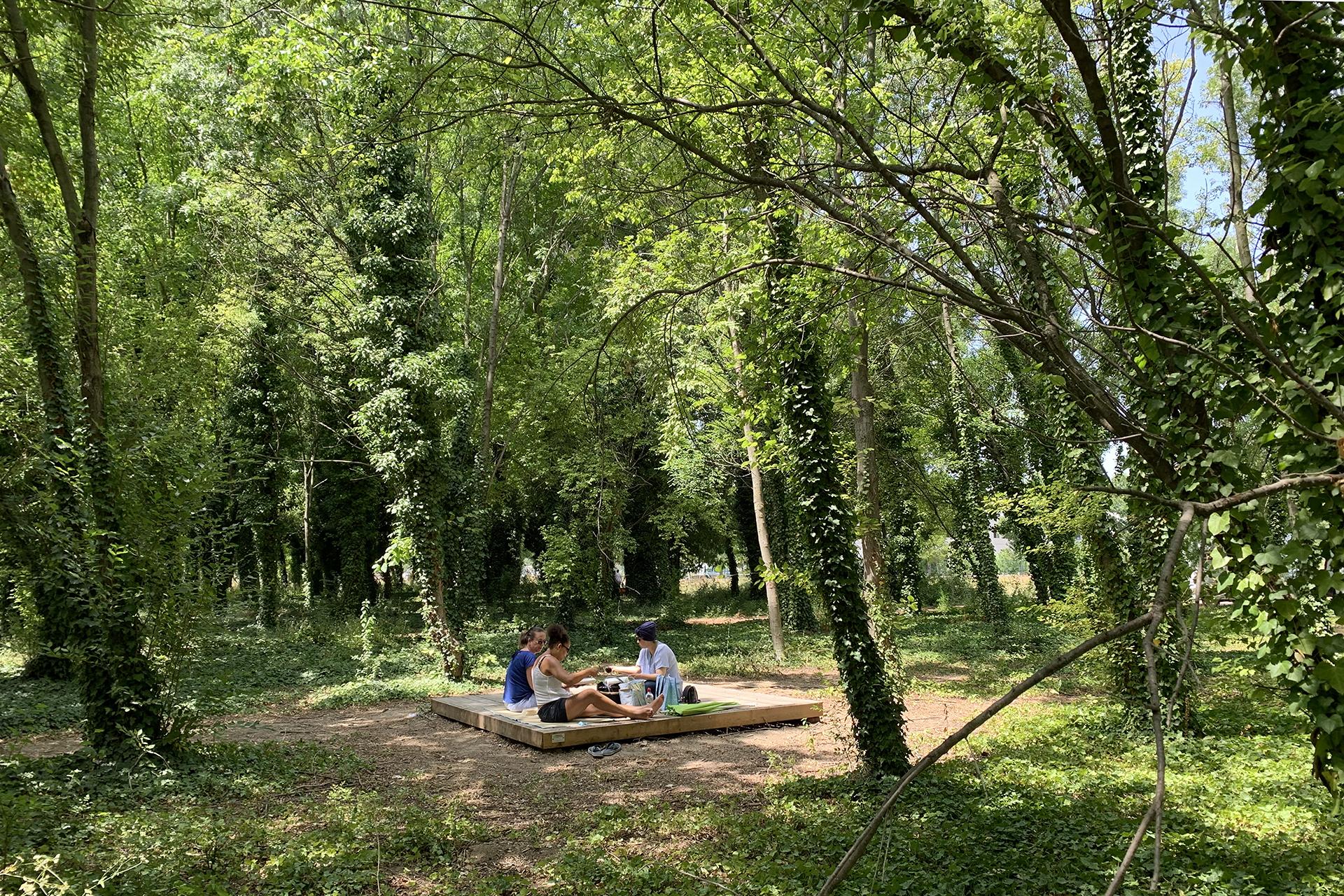 Le Parc du Bois des Noyers
